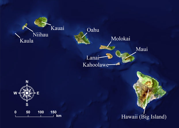Credit: http://oos.soest.hawaii.edu/