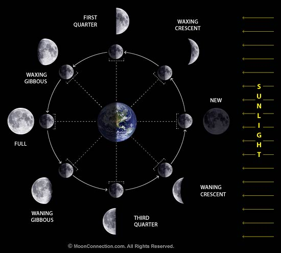 Credit - http://www.moonconnection.com/images/moon_phases_diagram.jpg