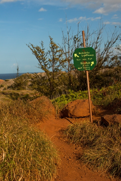 "Beginning the ""trail"" to the Nakalele Blowhole. We took a slightly longer, but more interesting route."
