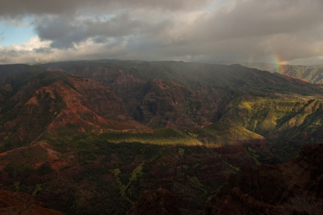 One last look at Waimea Canyon on the way out of the park, with the sun low on the horizon and a surprise rainbow diving into the canyon.