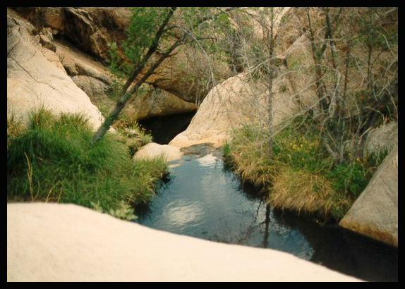 My pictures weren't that nice, but here's a glimpse of some of the pools. Credit - http://arizona.sierraclub.org/trail_guide/Hike23.htm