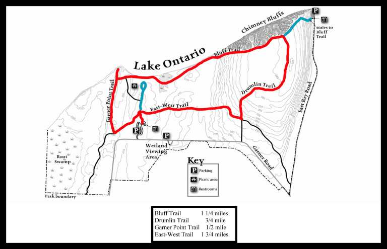 Map of my hiking path, main loop shown in red and detours shown in teal. The main loop was probably a little over 3 miles.