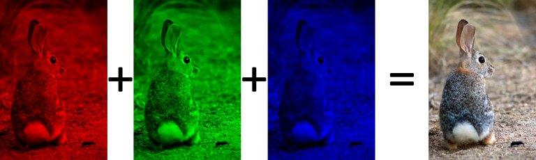 RGB_web.jpg